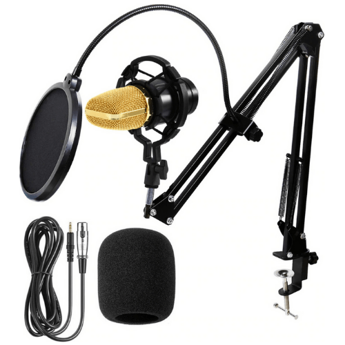 Professional Recording Studio Microphone BM-700 Condenser Microphone with Pop Filter and Swivel Mount