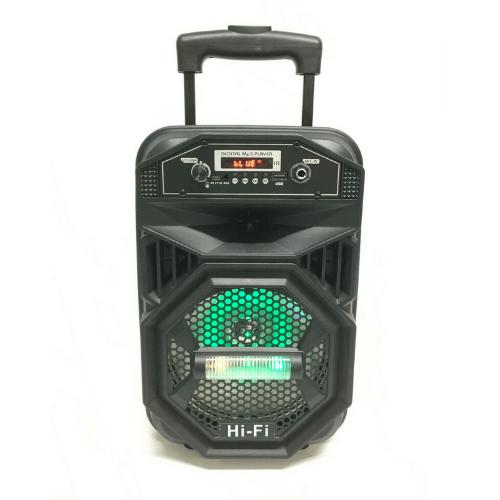 Portable Party Speaker True Wireless System TWS Bluetooth Speaker Karaoke DS-1805