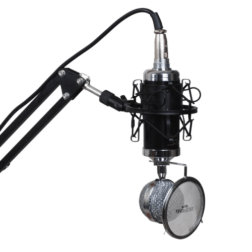 DS-L500 Mic Kit Condenser Studio Microphone with Adjustable Mic Suspension Scissor Arm, Shock Mount and Pop Filter Karaoke - DESHENG DS-L500
